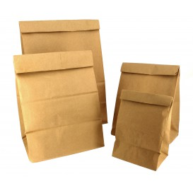 Paper Bag without Handle Kraft Brown 12+8x24cm (1000 Units)