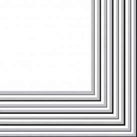 Paper Napkin 2 Layers Silver 33x33 cm (20 Units)