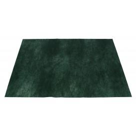 Novotex Placemat Green 50g 30x40cm (500 Units)