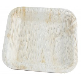 Palm Leaf Plate Square Shape 20x20cm (100 Units)