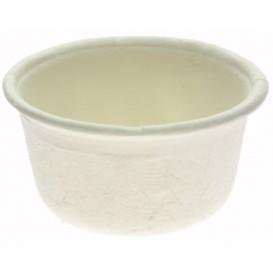 Sugarcane Container White Ø6,2cm 60ml (250 Units)