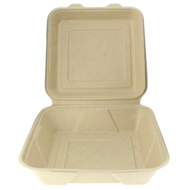 "Sugarcane Hinged Container ""Menu Box"" 23,5x23,5x7,8cm (50 Units)"