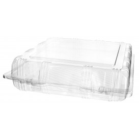 Plastic Hinged Bakery Container PET 22x22x6cm (220 Units)