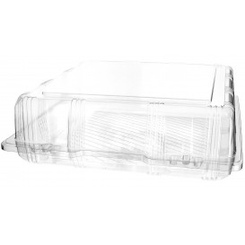 Plastic Hinged Bakery Container PET 25x25x8cm (220 Units)