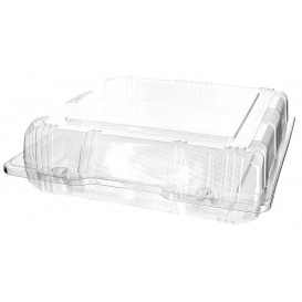 Plastic Hinged Bakery Container PET 20x20x6cm (220 Units)