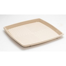 Sugarcane Tray Square Shape Natural 36x36cm (5 Units)