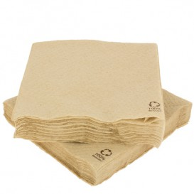 Paper Napkin Eco-Friendly 30x30cm 1 Layer (100 Units)
