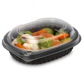 Plastic Container PP Rectangular Shape 250ml 14,2x11,1x3,1cm (640 Units)