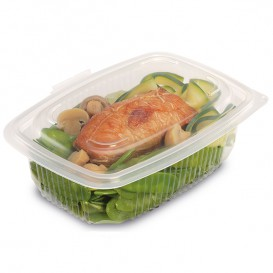 Plastic Container Microwave PP Transparente 600ml 18,5x13,5cm (300 Units)