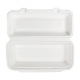 Sugarcane Panini Container 29x27,3x3,75cm (50 Units)