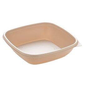 Plastic Deli Container PP Cream 500ml 16,5x16,5x4cm (50 Units)